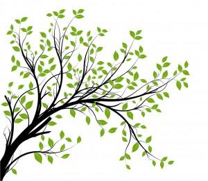 vector tree branch